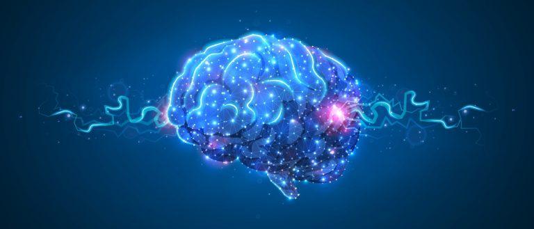 Human Reboot Gehirn